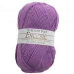 Encore Knitting Worsted - it's my apple pie!