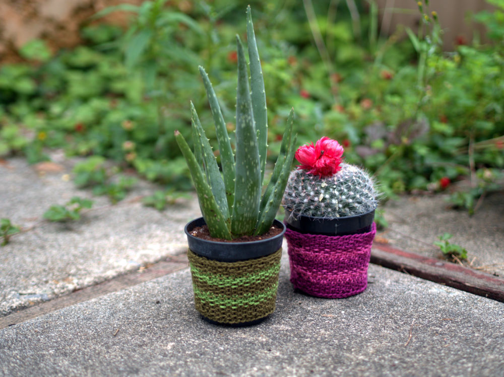 Plant Cozy Pattern in Cleo Cotton