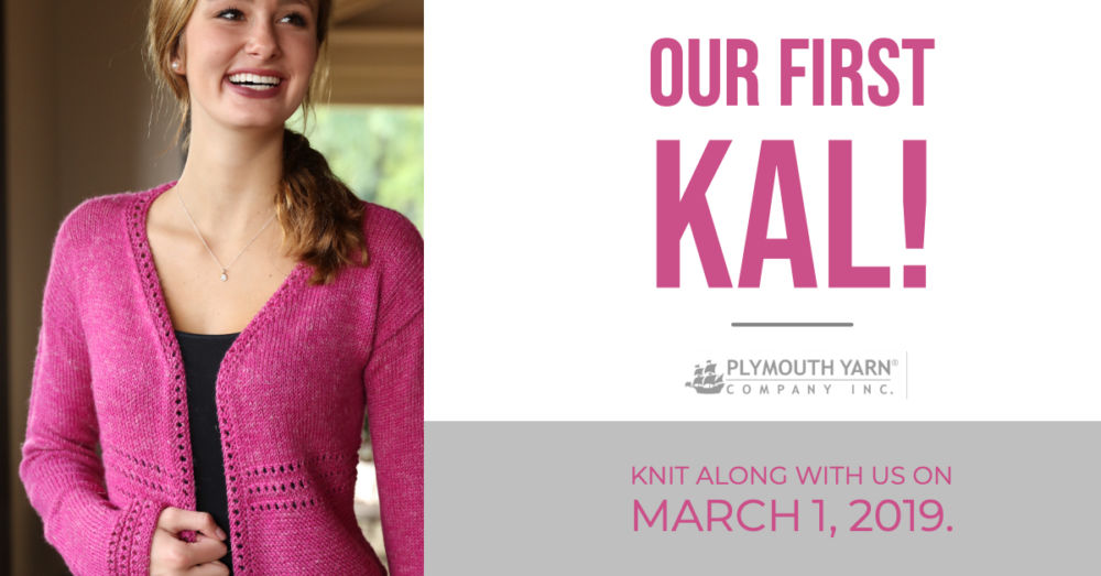 Our First Knit Along – March 1, 2019!